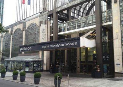 Hôtel PULLMAN MONTPARNASSE (75)